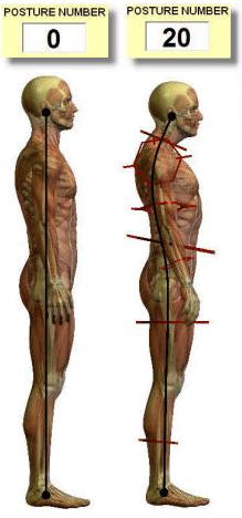 Posture Pro - posture number